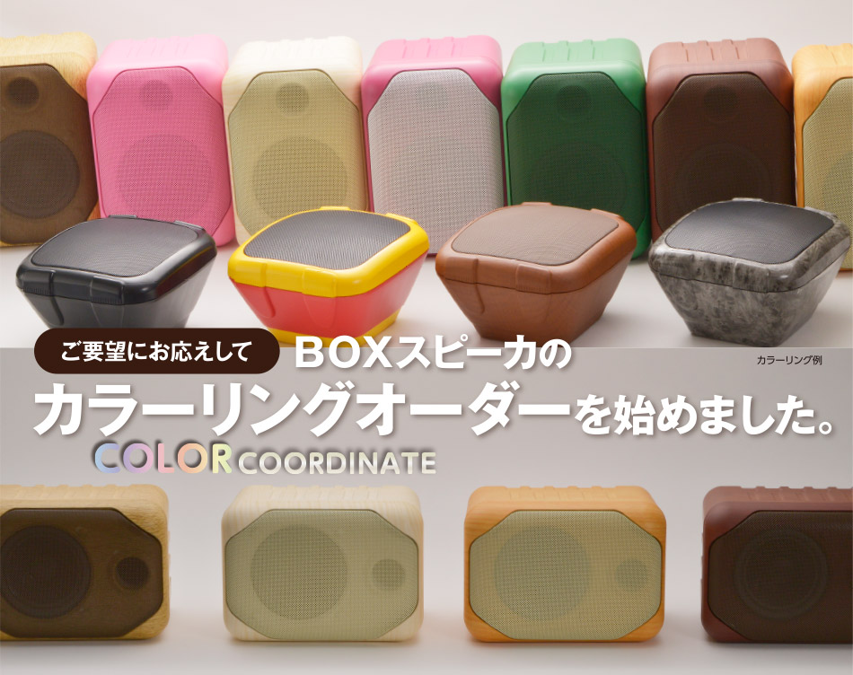 ご要望にお応えしてBOXスピーカのカラーリングオーダーを始めました